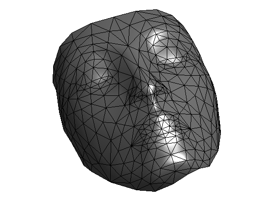Geodesic Distance Computation on 3-D Meshes
